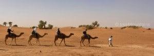 4_sahara_extensions_morocco_(c)_trekmountains