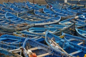essaouira_fishing_boats_morocco_(c)_sheila_west__